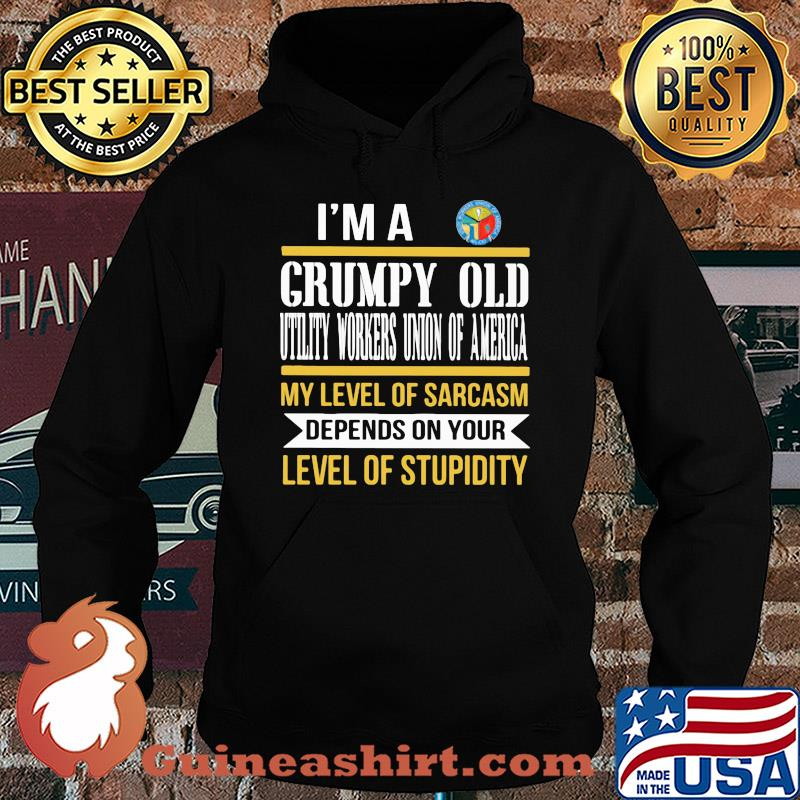I'm A Grumpy Old International Brotherhood Of Teamsters My Level Of Sarcasm Depends On Your Level Of Stupidity s Hoodie